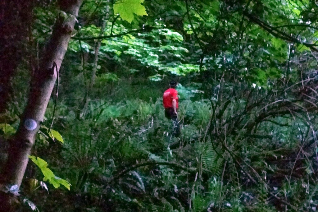 The searches took place in woods near Petit Tor Point. Photo: Dartmoor Search and Rescue Ashburton