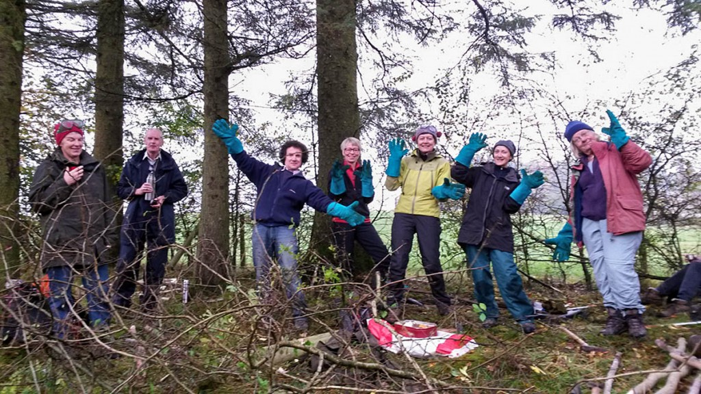 A group lays a hedge during the fell care day