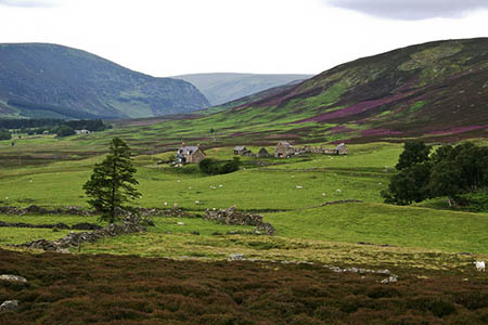 Glen Esk, scene of the search. Photo: Ian Cleland CC-BY-SA-2.0