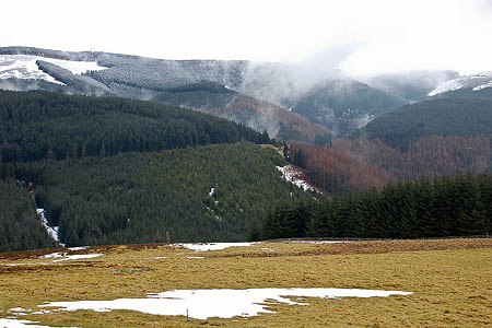 Glentress Forest, scene of the search. Photo: Jim Barton CC-BY-SA-2.0