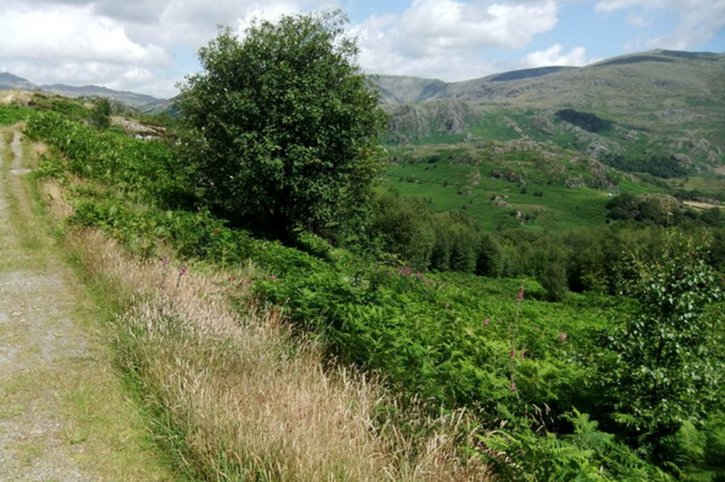 The man was walking in the Duddon Valley when he fell. Photo: David Brown CC-BY-SA-2.0