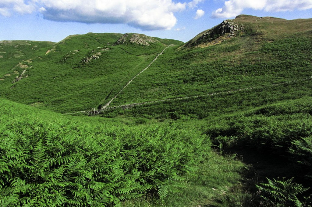 The woman injured herself while walking on High Rigg. Photo: Colin Park CC-BY-SA-2.0