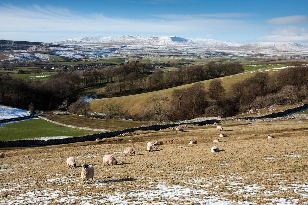 The Yorkshire Dales authority confirmed it was also selling properties