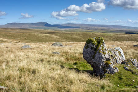 Wainwright's Harry Horse Stone on the slopes of Newby Moss, Ingleborough, with Pen-y-ghent in the far distance