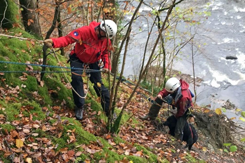 Rescuers retrieve the dog from its precarious position. Photo: Keswick MRT