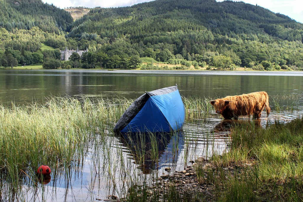 One result of irresponsible camping at Loch Acray. Photo: Loch Lomond and the Trossachs NPA