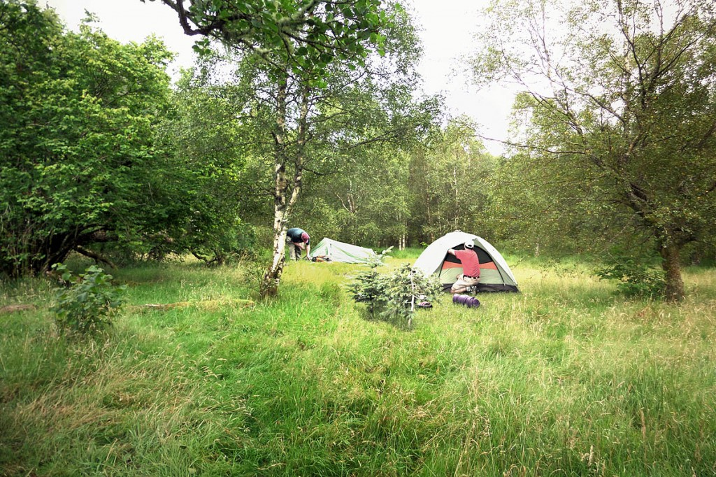 An impression of one of the new informal campsites produced by the park authority. Image: Loch Lomond & the Trossachs NPA