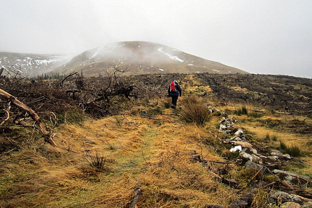 The incident happened on Meall Mòr. Photo: Richard Webb CC-BY-SA-2.0