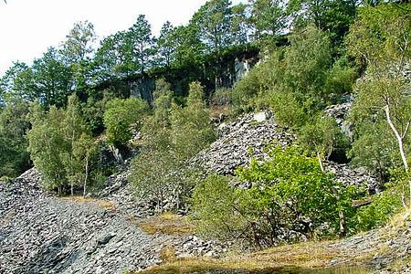 The man fell at the quarry near Moss Rigg Wood. Photo: Mick Garratt CC-BY-SA-2.0