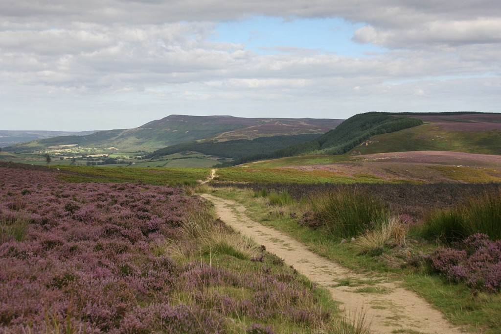 Campaigners say companies could site their rigs just outside national parks such as the North York Moors