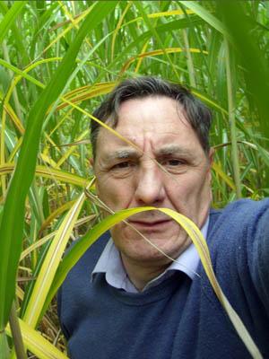 Paul Partington tackles an overgrown footpath - paulpartingtonvert