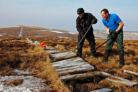 Rangers working on removing the old boardwalks. Photo: NNPA