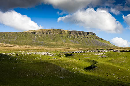Pen-y-ghent, seen from Horton Scar Lane