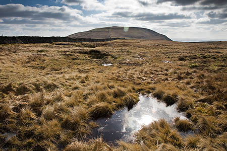 Pen-y-ghent's bulk rises above the Plover Hill plateau