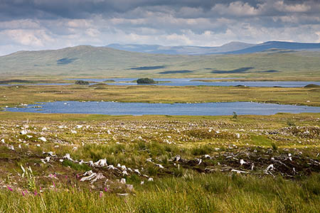 Campaigners say the windfarm would be visible from the A82 across Rannoch Moor