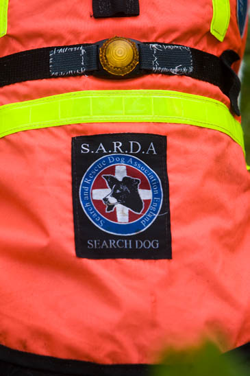 The Sarda England badge worn by graded dogs