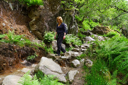 The Steall Gorge footpath