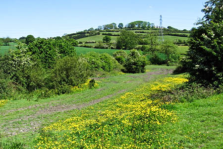 Strawberry Bank, which once claimed the title of Nottinghamshire's high point. Photo: Dave Bevis CC-BY-SA-2.0