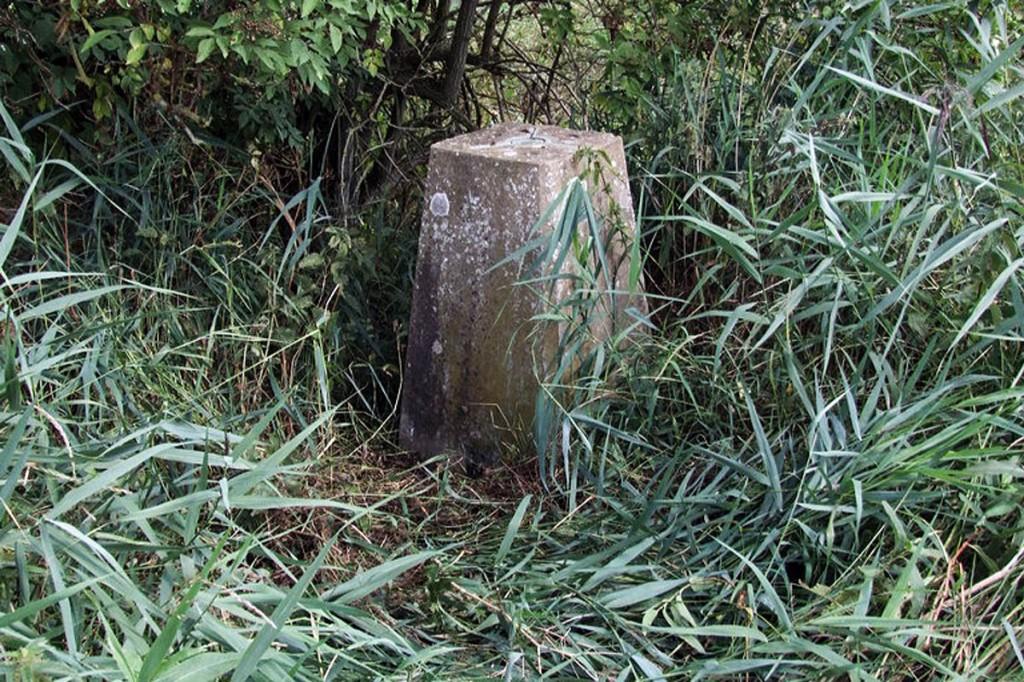 Britain's lowest trig pillar at Little Ouse. Photo: Siobhan Brennan-Raymond CC-BY-SA-2.0