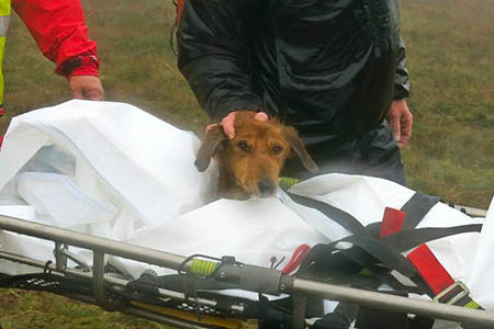 Wufra is stretchered from Buckden Pike. Photo: UWFRA