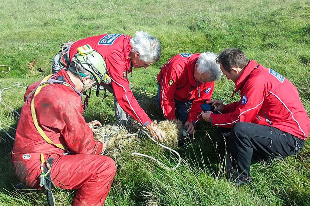 Upper Wharfedale FRA members with the rescued sheep on Hawkswick Clowder. Photo: UWFRA