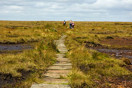 Footpaths and access must be priorities, say the Ramblers