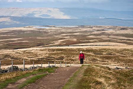 A walker approaches Whernside's summit