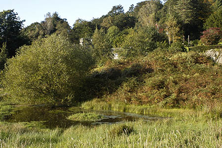 White Moss Common is close to Dove Cottage. Photo: Tom Richardson CC-BY-SA-2.0