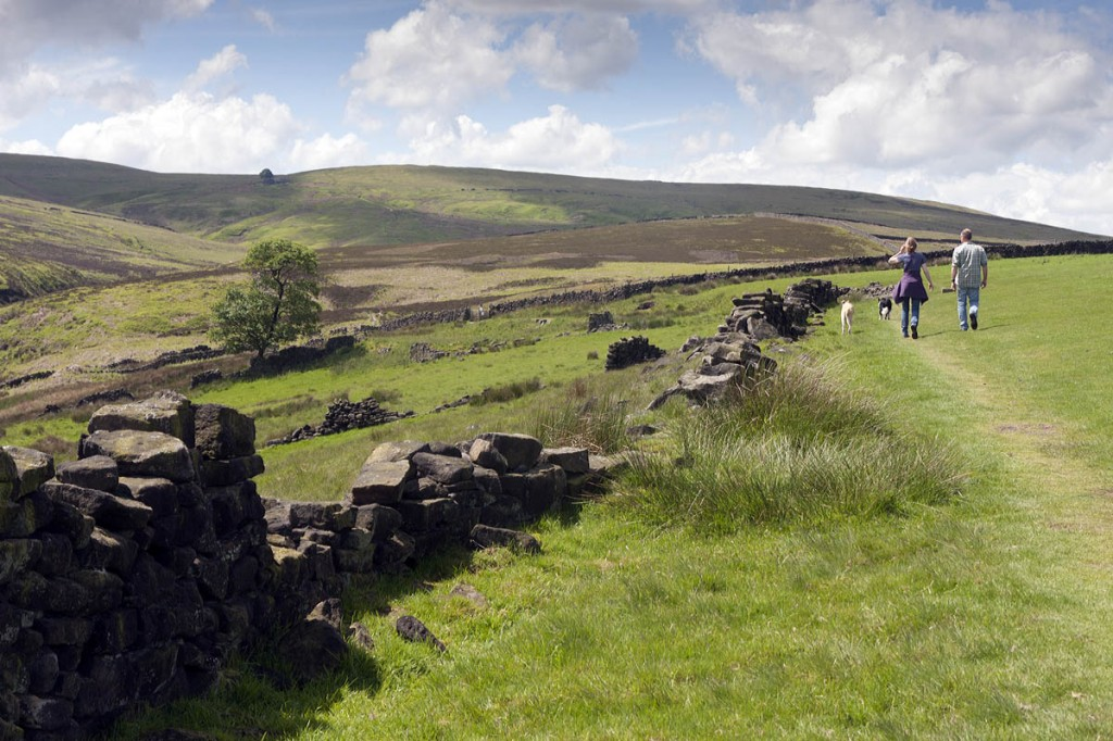 Walkers head towards the ruins of Forks House, with Top Withins in the distance